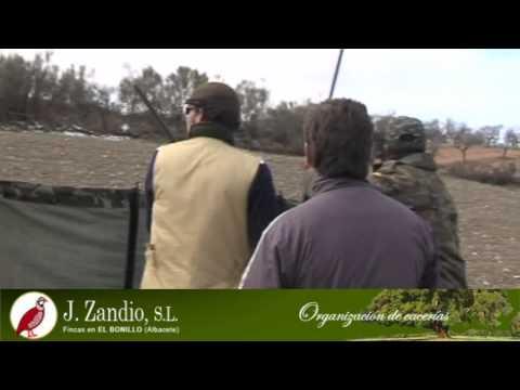 Zandio - Ojeo de perdiz