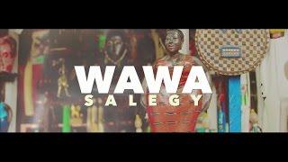 Wawa Salegy Ft. Serge Beynaud - Fusion - clip officiel
