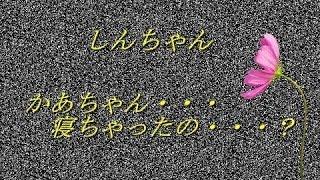 getlinkyoutube.com-クレヨンしんちゃんの都市伝説 『裏設定』