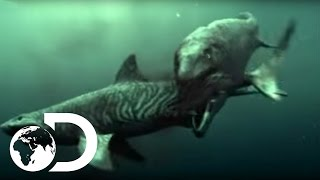 getlinkyoutube.com-Mosasaur Shark Attack - Reign of the Dinosaurs