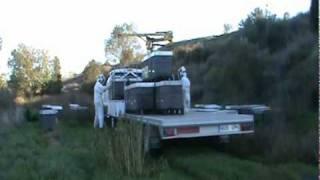 getlinkyoutube.com-AJ 2006 - Beehive crane - Grue ruches - Kran bienenstock - Grua colmenas