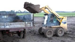 getlinkyoutube.com-Gehl skidsteer filling 1952 Chevy 2-ton dump truck with manure