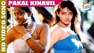 Pakalkinavil  | THATTAKAM | Malayalam Evergreen Movie Video Song | Ranjitha