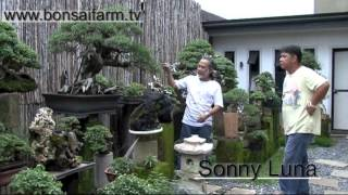 getlinkyoutube.com-Lindsay farr's World of Bonsai series 2 episode 18