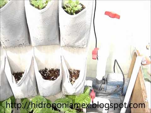 Hidroponia vertical