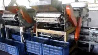 New Full automatic cashew shelling machine - Dây chuyền chẻ hạt điều tự động