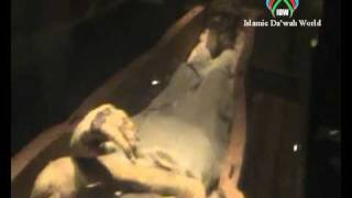 getlinkyoutube.com-Firon Mummy  in Egypt Museum