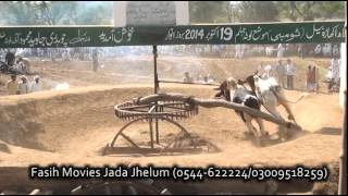 getlinkyoutube.com-Bull Race Jhelum lota 2014 part 2
