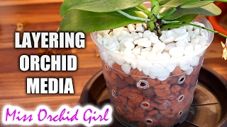 getlinkyoutube.com-The problem with layered Orchid media