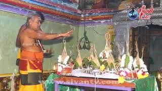 பண்டத்தரிப்பு காலையடி ஞான வேலாயுதசுவாமி கோவில் வஸ்திர கலசயாகம் 19.02.2019