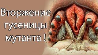Вторжение гусеницы мутанта ! ( Battlepillars )