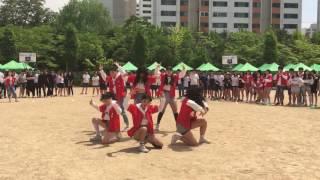 일산동고댄스부 바이올렛 VIOLET  체육대회 공연