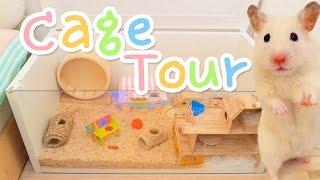 getlinkyoutube.com-Cage Tour 🌈 Vanilla's new home!