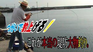 getlinkyoutube.com-堤防から大物連発!ツガイで釣る