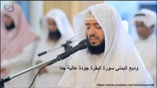 سـورة البقرة كاملة وديع اليمني - Surat Al Baqarah Wadee Al Yamani width=