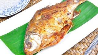 getlinkyoutube.com-ปลาส้ม