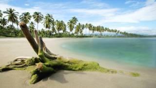 getlinkyoutube.com-Beach - video designed by dreamscene.org