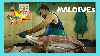 getlinkyoutube.com-Cleaning a 50Kg tuna at the fish market in Malé, The Maldives
