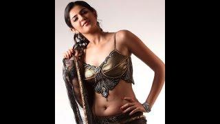 actress deeksha seth hot stills hot saree sexy boobs