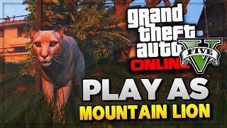 getlinkyoutube.com-GTA 5 PS4 Next Gen - Play Rare Animals Peyote Location | GTA 5 Easter Eggs Gameplay (GTA V)