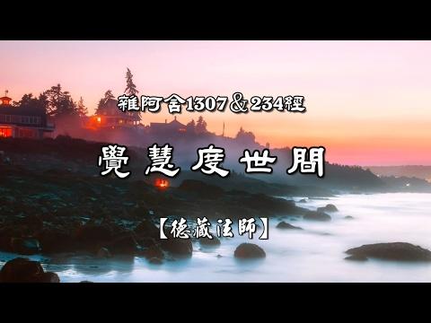 雜阿含1307&234經-03.覺慧度世間【德藏法師】
