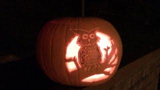 getlinkyoutube.com-Halloween pumpkin carving - owl time-lapse