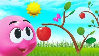 Learn Fruits With Wonderballs | Funny Cartoons For Kids by Cartoon Candy