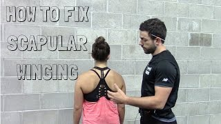 getlinkyoutube.com-How to Fix Scapular Winging - A Case Study with Exercises