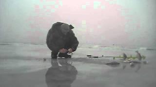 getlinkyoutube.com-Ловля огромных окуней зимой
