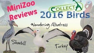 getlinkyoutube.com-CollectA 2016 Birds Detailed Review