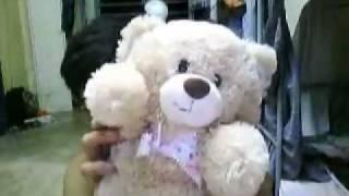 Teddy Disco