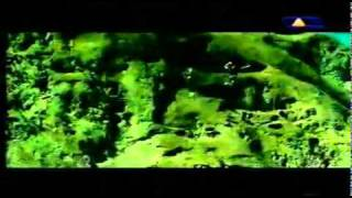getlinkyoutube.com-Ayla - Liebe (Official Video)