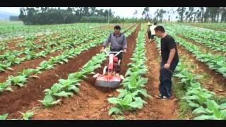 Nichino 日農牌 Power tiller / Cultivator / Hand tractor 中耕管理機 (850S)-4