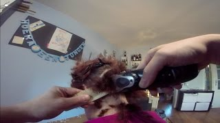 getlinkyoutube.com-Evelien (Impression Of A Haircut)