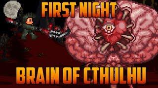 Terraria - Brain of Cthulhu first Night [Speedrun Challenge]