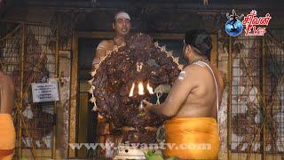 நல்லூர் கமலாம்பிகா சமேத ஸ்ரீகைலாசநாத சுவாமி கோவில் ஆருத்திரா தரிசனம் 30.12.2020