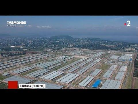 AMORCE : La production chinoise