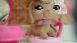 getlinkyoutube.com-Littlest Pet Shop: Salon