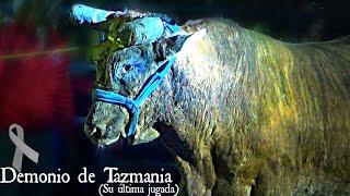 getlinkyoutube.com-SE FUE JUGANDO COMO LOS GRANDES | La última jugada del Demonio de Tazmania