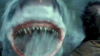 getlinkyoutube.com-恐怖の人喰いザメが沈没した軍艦の乗組員を襲う!/映画『パシフィック・ウォー』特別映像