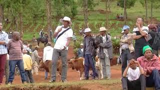 Tsenan'omby evangélisation Antsirabe 29 12 2018 partie 1