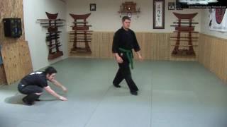 getlinkyoutube.com-Ninjutsu - Kihon Happo - Flow Session - Ninja Training Free Video Blog - Bujinkan