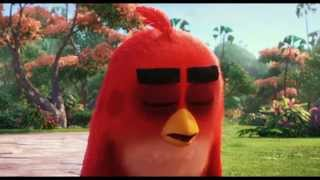 The Angry Birds Movie   Official Tamil Teaser Trailer