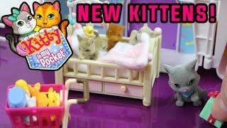 Kitty In My Pocket #1 - Shopkins Meet The New Kittens!