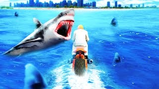 getlinkyoutube.com-EXTREMELY DANGEROUS SHARK RACE! (GTA 5 Funny Moments)