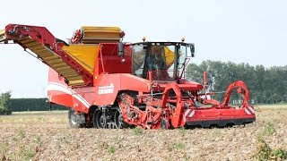 Grimme TECTRON 415 self-propelled potato harvester