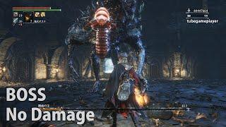【Bloodborne】獣血の主(寄生虫) ノーダメージ攻略【聖杯ダンジョンBOSS/呪われたトゥメル=イル】