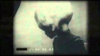 getlinkyoutube.com-Grey Alien Filmed By KGB