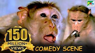 Monkey Funny Scene | Comedy Scene | Jawab Hum Denge | Jackie Shroff, Shatrughan Sinha, Sridevi | HD