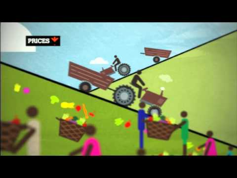 From crisis to stability - World Food Day 2011 PSA